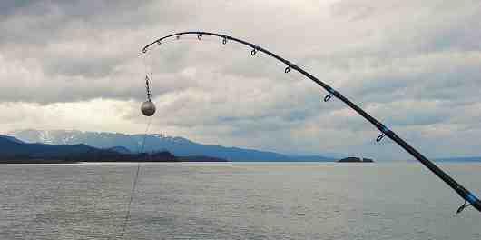 Quel est le fil de pêche le plus résistant ?