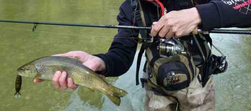 Quel est le prix d'une canne à pêche ?
