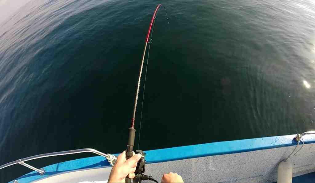 Quelle canne à pêche pour bord de mer ?