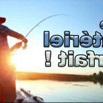 Quelle canne à pêche pour la perche ?