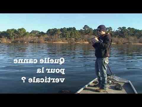 Quelle est la meilleur technique pour pêcher le sandre ?