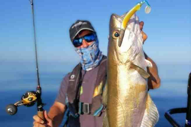 Quelle longueur canne à pêche ?