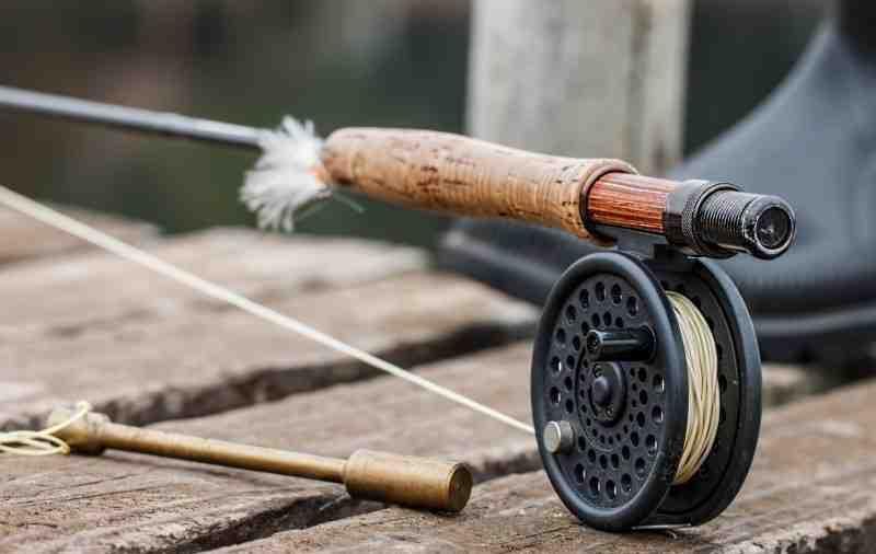 Quelle longueur de canne pour pêche au leurre du bord ?