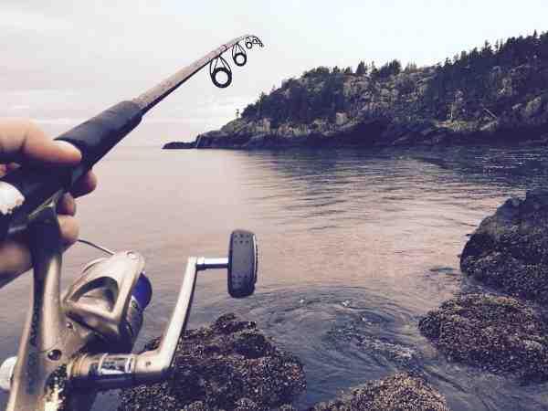Quelle longueur de fil pour canne à pêche ?