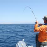 Qu'est-ce que le grammage d'une canne à pêche ?
