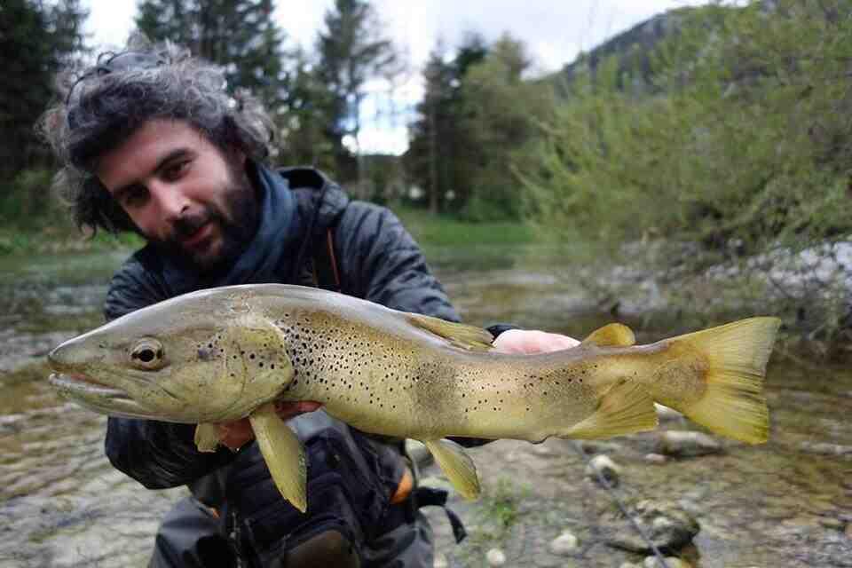 Quel nylon pour pêcher la truite ?