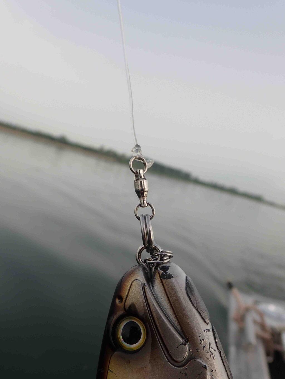 Quelle taille de fil de pêche ?