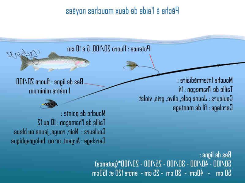 Quel est le meilleur fil de pêche ?
