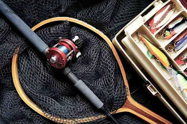 Quel fil pour pêcher la carpe au coup ?