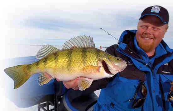 Comment pêcher le brochet en septembre ?