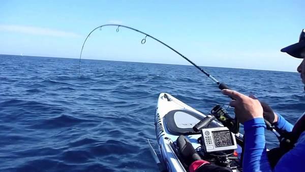Bas de ligne peche en mer