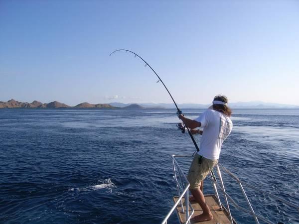 montage ligne peche en mer