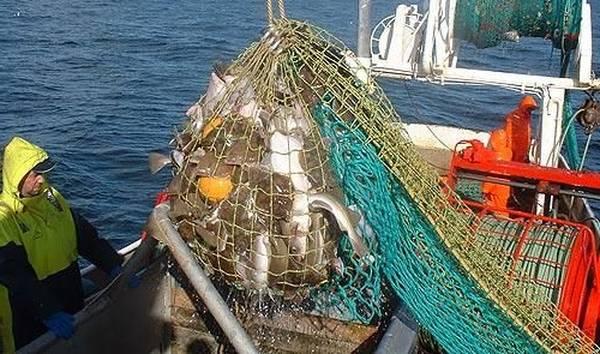 technique de peche en mer