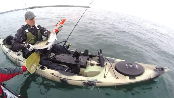 canne peche en mer bateau