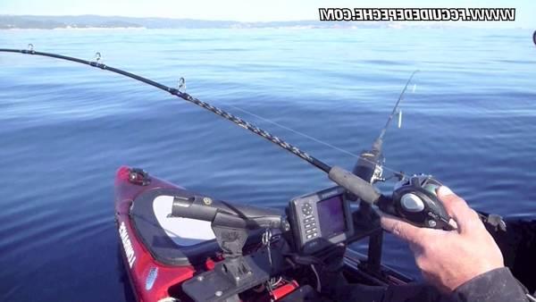 Leurre pour peche en mer