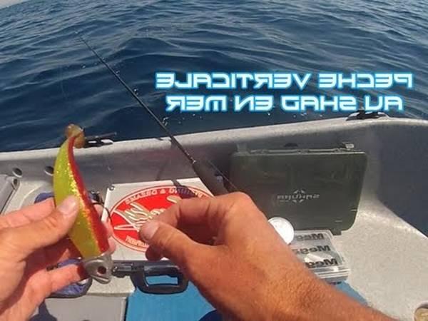 moulinet peche en mer